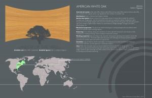 2 White oak