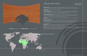 7 African Mahogany